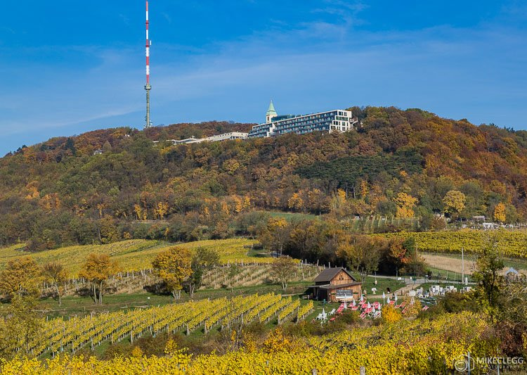 Kahlenberg in the autumn, Vienna