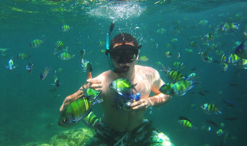 Swimming with fish in Thailand