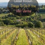 Lesser Known Things To Do If You Visit Vienna