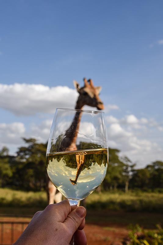 Girafffe Manor in Nairobi, Kenya