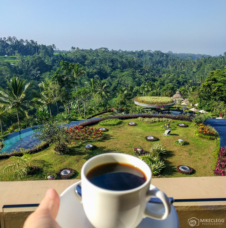 Jungle and Coffee Views at Padma Ubud