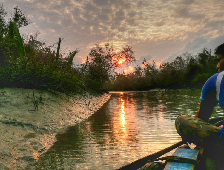 Sundarbans national park, India