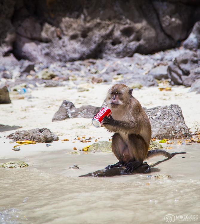 Monkey Beach, Ko Phi Phi