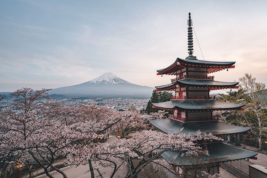 Chureito Pagoda and Mt Fuji, Sakura season, Japan - ©Kohki