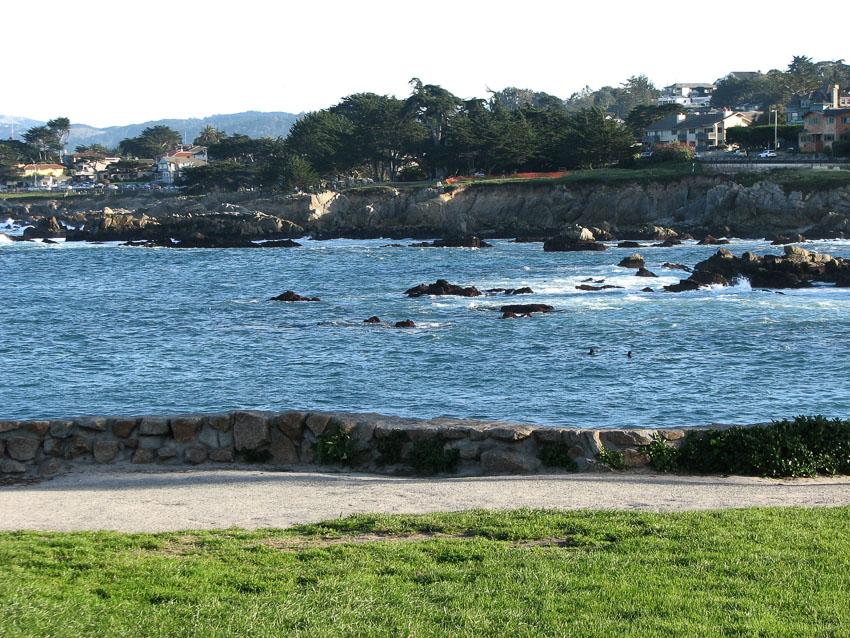 Monterey, USA by Priya