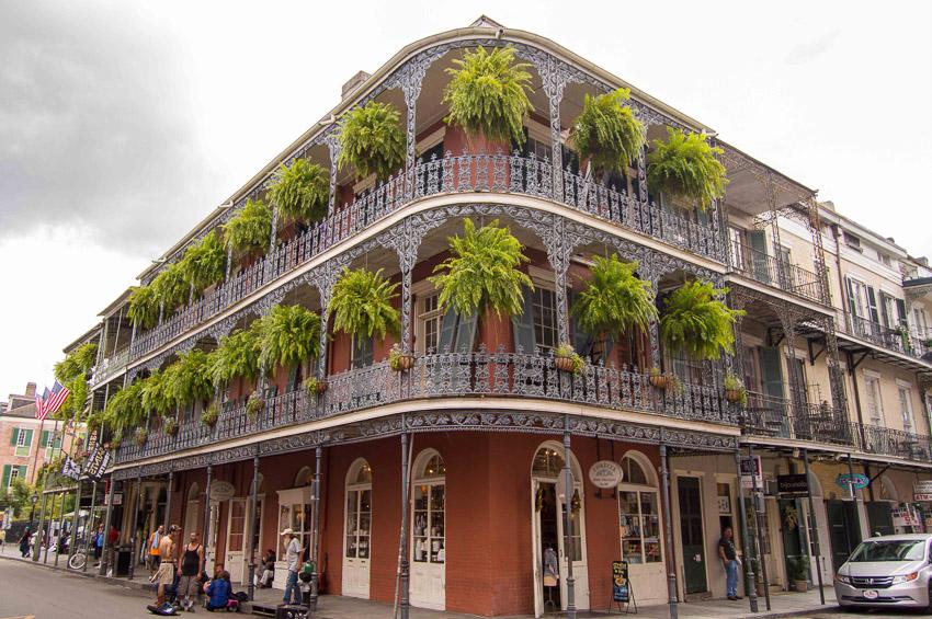 New Orleans, United States by Yulia Dyukova
