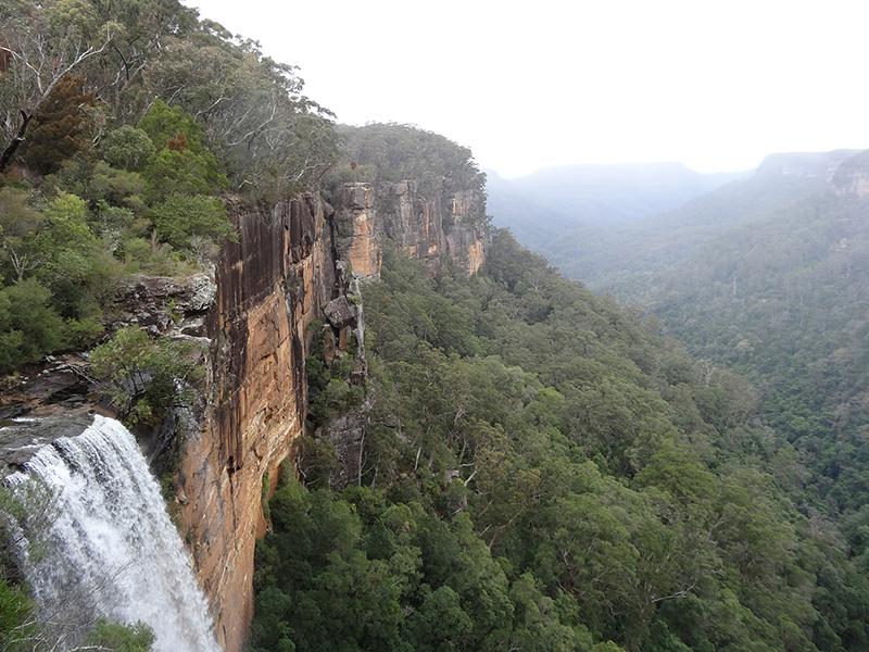 Fitzroy Falls by denisbin, Flickr, CC BY-ND 2.0