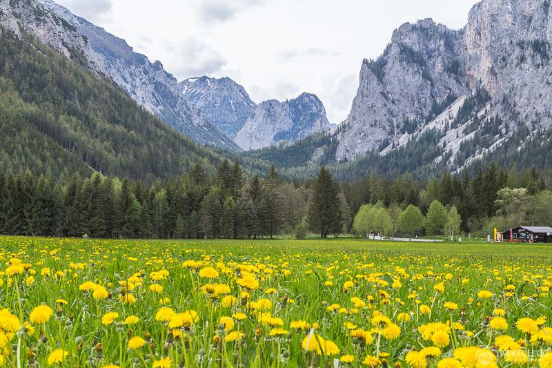 Mountain and scenic views in Tragöß, Austria