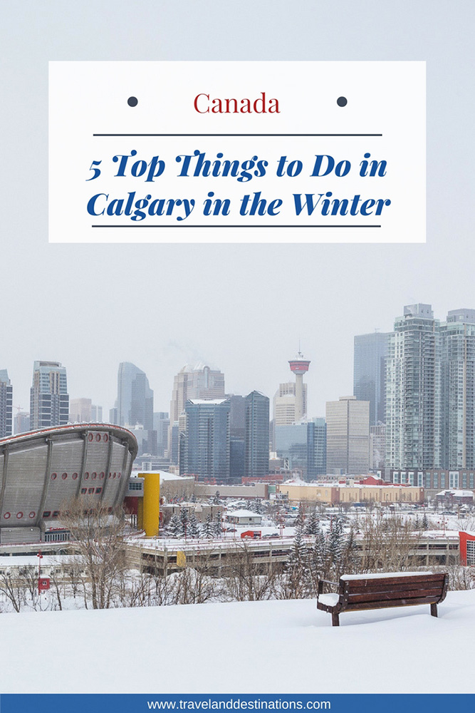 5 Top Things to Do in Calgary in the Winter