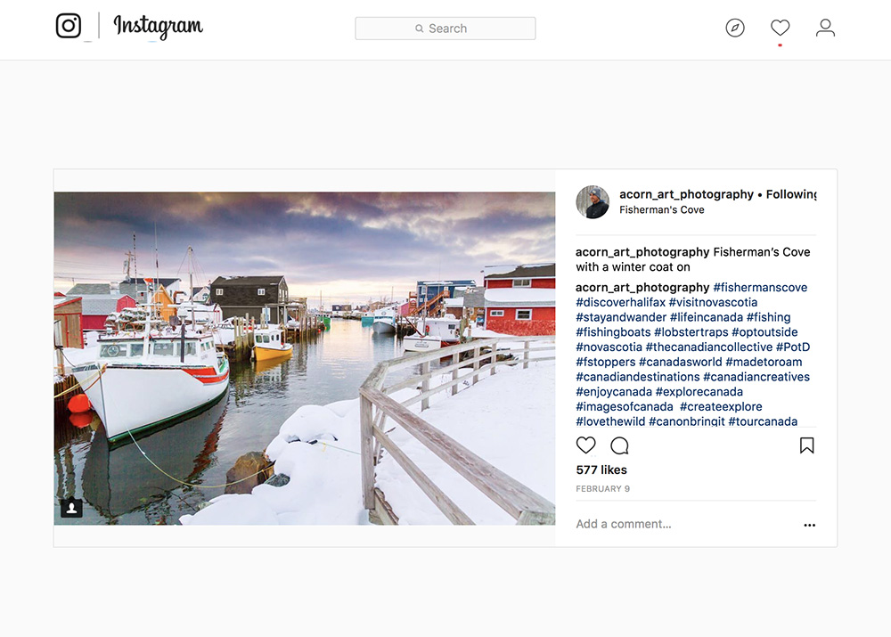 @acorn_art_photography on Instagram
