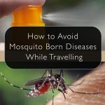 How to Avoid Mosquito Born Diseases While Travelling