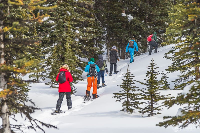 Snowshoe hikes with Rockies Heli, Canada