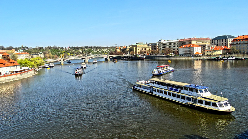 Pragues in Prague