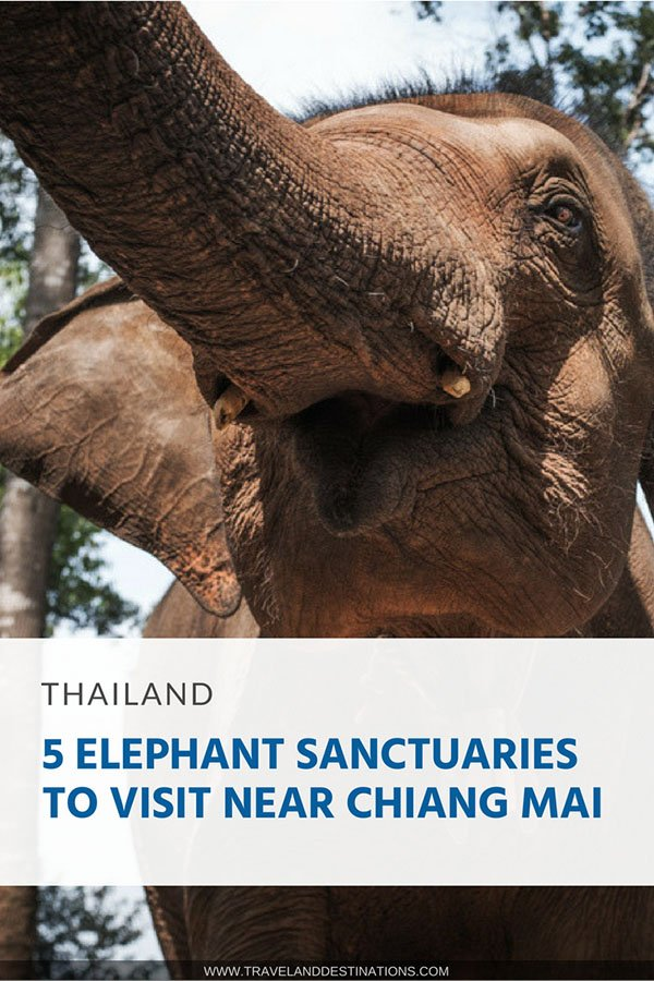 Pinterest - 5 Elephant Sanctuaries to Visit near Chiang Mai