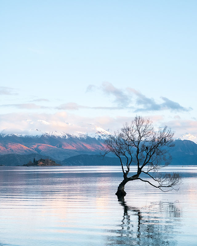 Lake Wanaka -hamish-clark-365162-unsplash