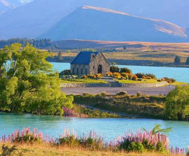 11 Things To Know Before Visiting New Zealand