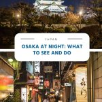 Osaka at Night - What to See and Do
