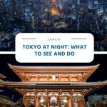 Tokyo at Night - What to See and Do