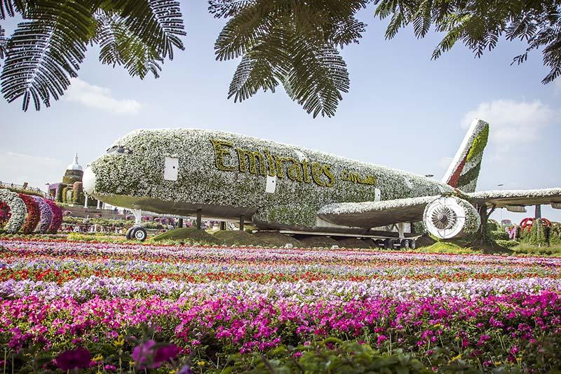 Dubai Miracle Garden- Dubai