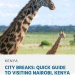 Quick Guide to visiting Nairobi - Pin