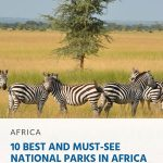 10 Best and Must-See National Parks in Africa - pin
