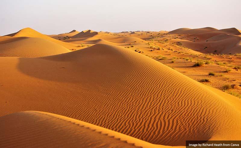 The Wahiba Sands of the Arabian Desert
