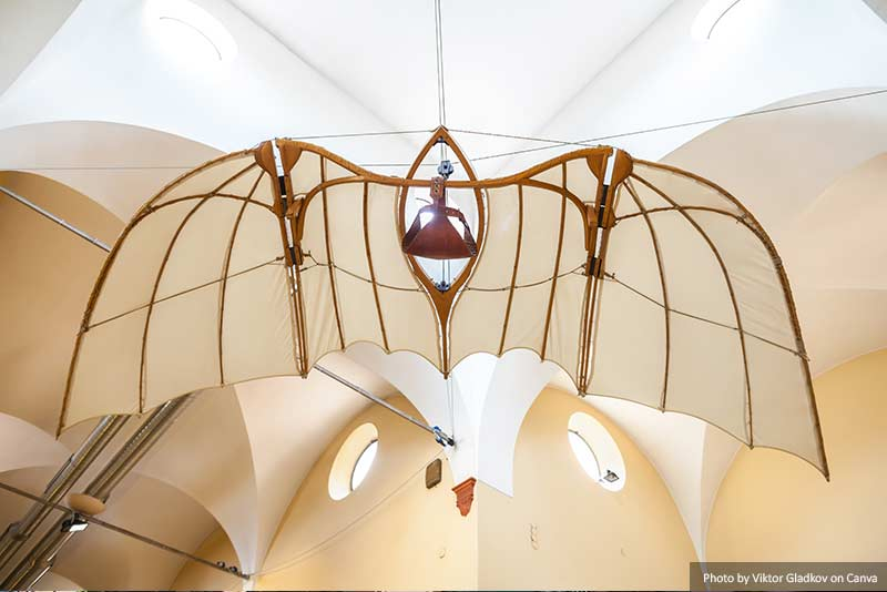 Flying Machine of Leonardo Da Vinci