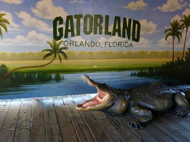 Gatorland 10 лучших вещей, которые стоит увидеть и сделать в Орландо (США) 10 лучших вещей, которые стоит увидеть и сделать в Орландо (США) Gatorland