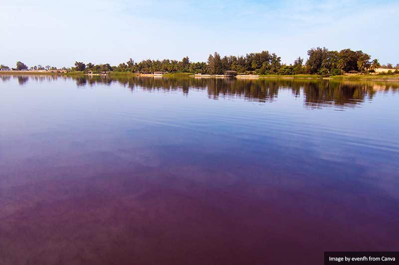 Лак Роуз, Сенегал 10 лучших мест для посещения в Сенегале и Гамбии 10 лучших мест для посещения в Сенегале и Гамбии Lac Rose Senegal