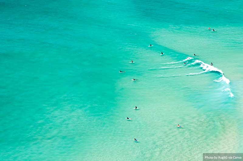 Серферы в Австралии золотое побережье 10 лучших мест, которые стоит посмотреть и чем заняться на Золотом побережье Surfers in Australia