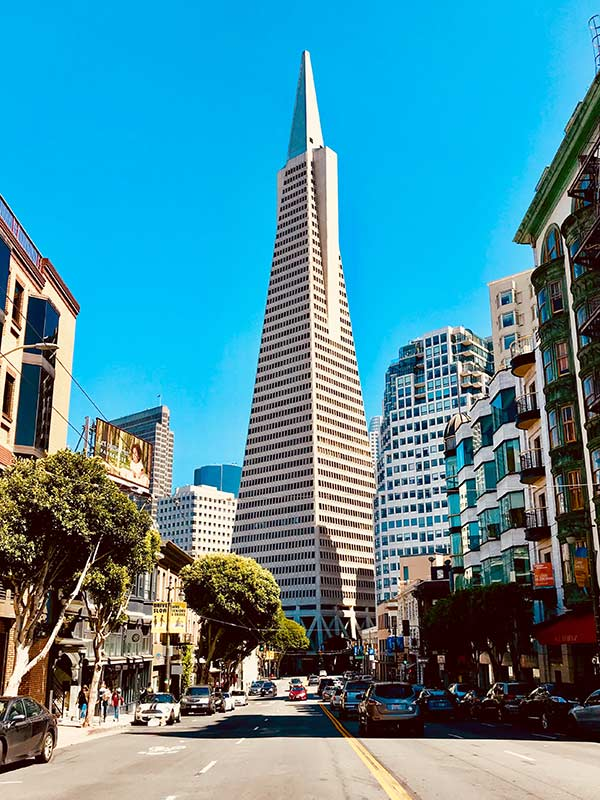 Transamerica Pyramid during the day