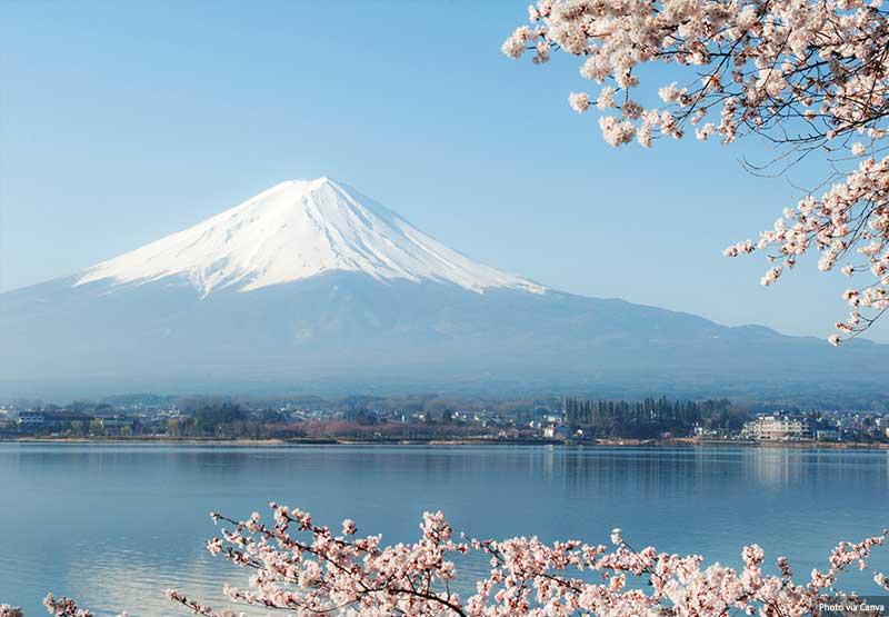 Views of Mt. Fuji from Lake kawaguchi