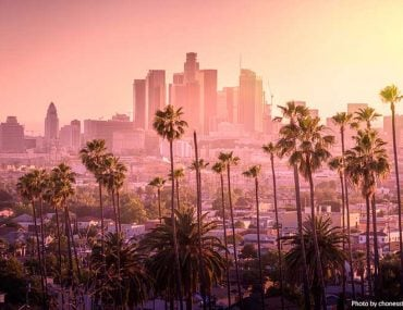 Los Angeles skyline and palm trees