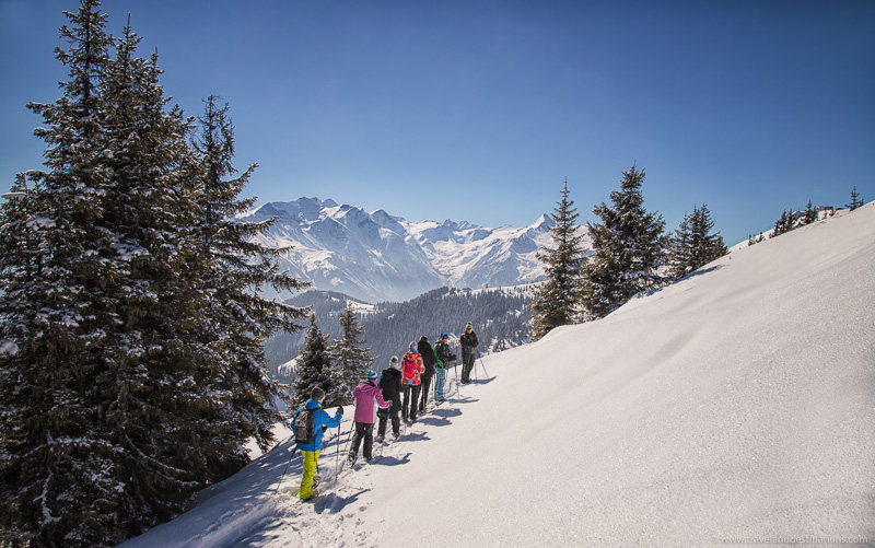 Snowshoe hikes in the winter