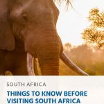 16 Things to Know Before Visiting South Africa