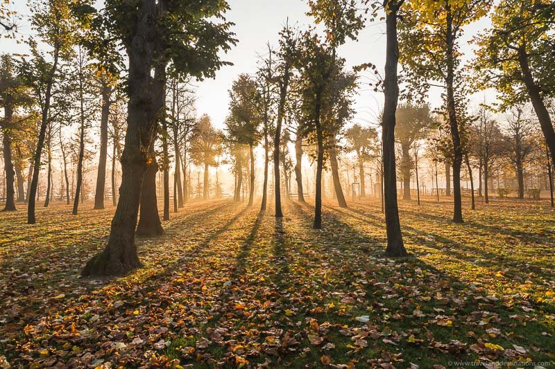 Autumn with beautiful light at sunrise