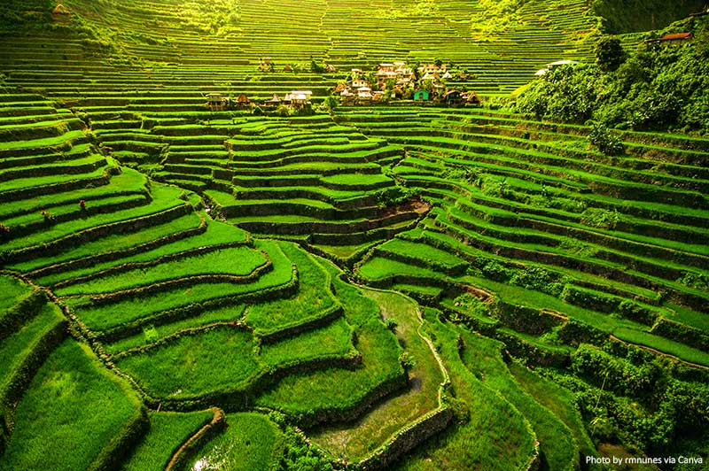 Batad Rice Terraces in North Luzon, Philippines