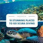 10 Stunning Places to Go Scuba Diving in Indonesia