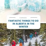 Fantastic Things to Do in Alberta in the Winter