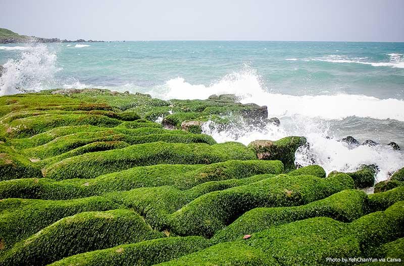 Laomei Green Reef, Taiwan