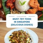 Must-Try Food in Singapore (10 Delicious Dishes)