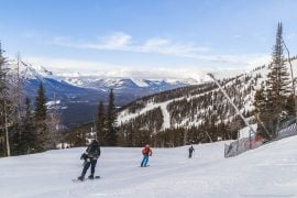 Skiers and ski resorts