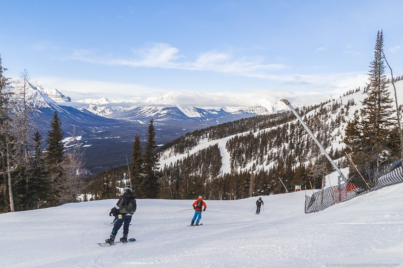 Skiers and ski resorts