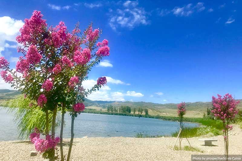 Lac Lisi, Tbilissi, Géorgie