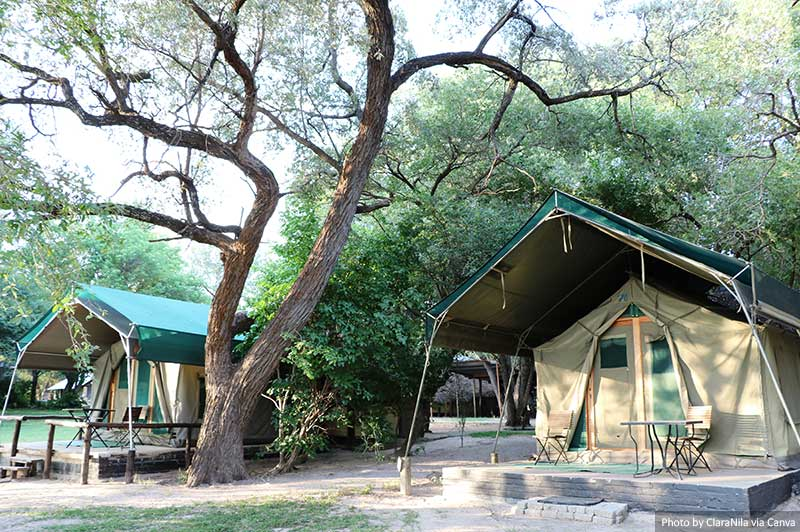 Safari Camp in Africa