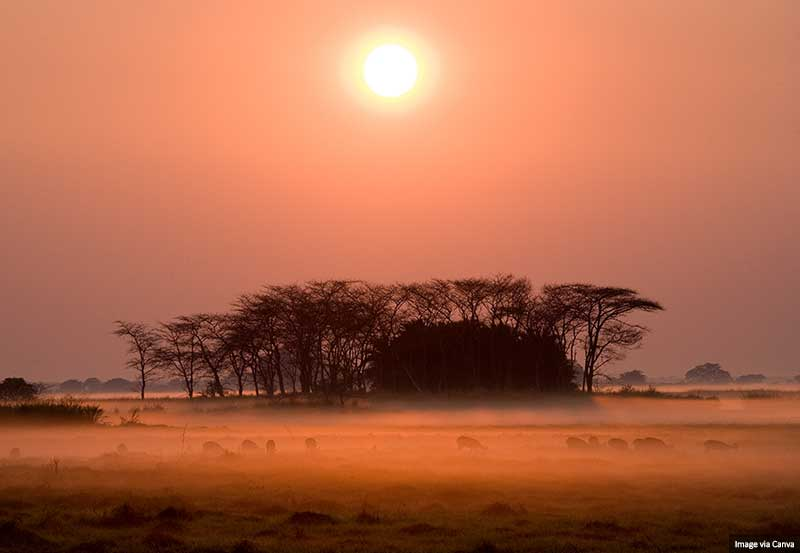 Sunrise in Kafue National Park, Zambia