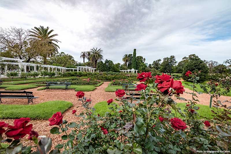 El Rosedal Rose Park at Bosques de Palermo (Palermo Woods) - Buenos Aires