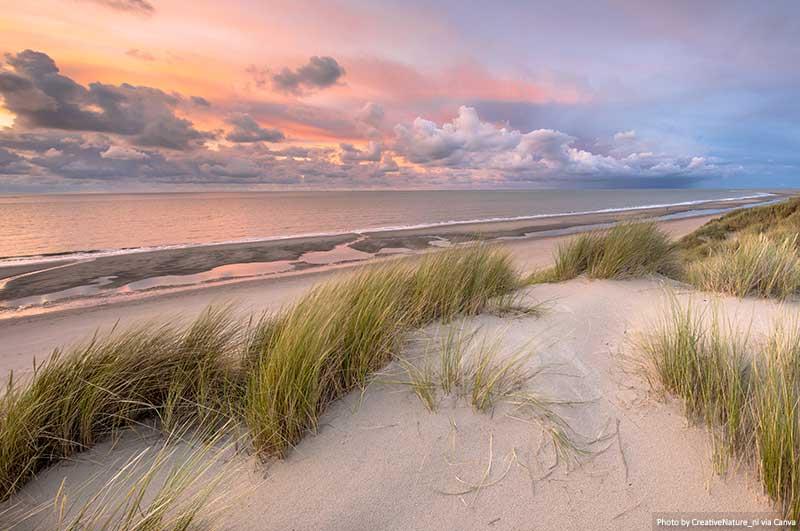 Dunes and coast - Schiermonnikoog