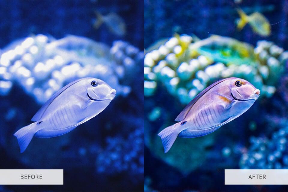 Underwater Light Nature Preset