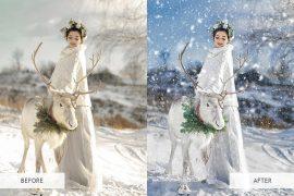 Snow Overlays example image